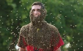 ミツバチひげコンテンスト